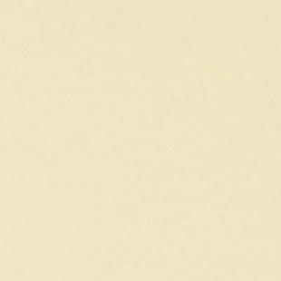 Feuille de stratifi arpa 305x130 avorio 0200 erre prix par feuille - Prix d une feuille de stratifie ...