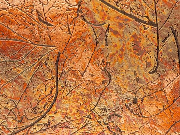 stratifi hubler m tal fossile cuivre feuilles d 39 automne. Black Bedroom Furniture Sets. Home Design Ideas