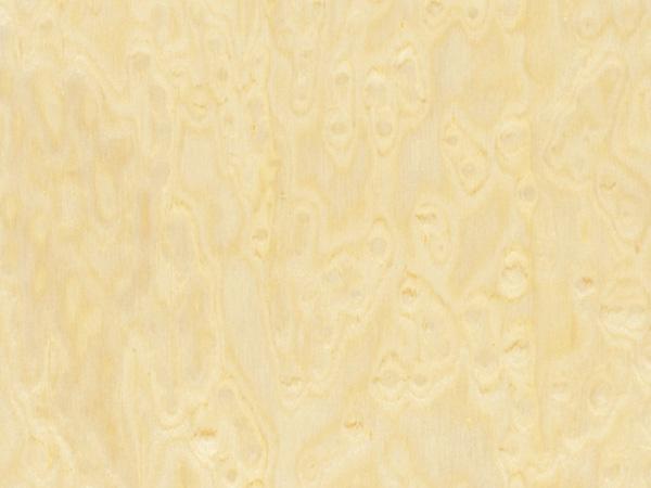Feuille placage bois reconstitu sur stratifi alpikord erable clair mouchet 250x125 - Feuille de placage ...